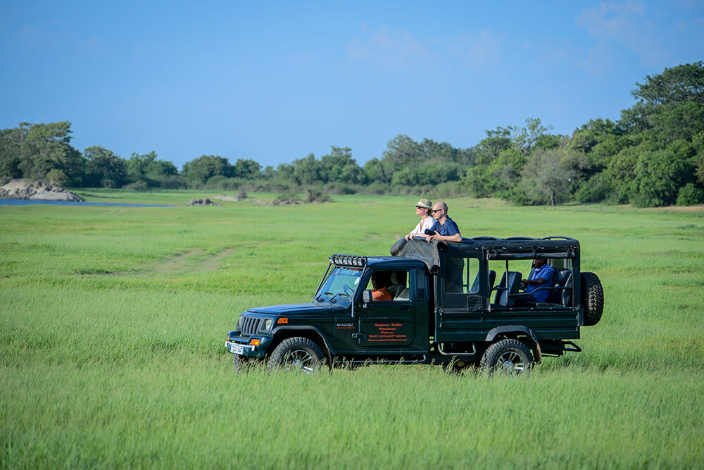 Jeep Safari in Sri Lanka