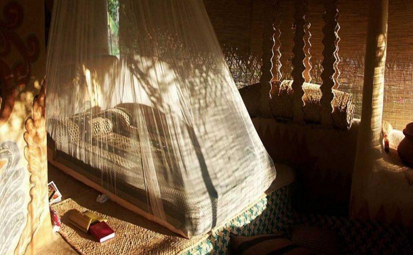 Experiencing Sri Lankan nature in true luxury fashion
