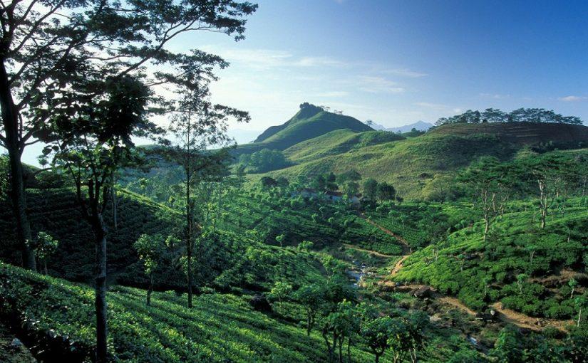 Six innovative ideas for a holiday in Sri Lanka