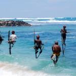 Stilt Fishing in Galle