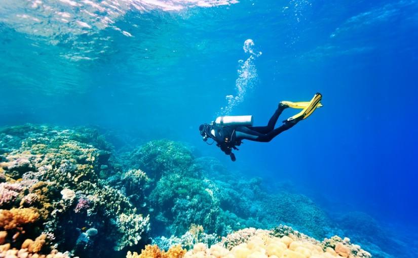 7 best water sport activities in Sri Lanka