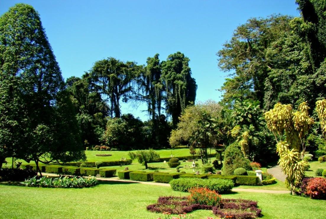 Royal Botanical Gardens in Sri Lanka