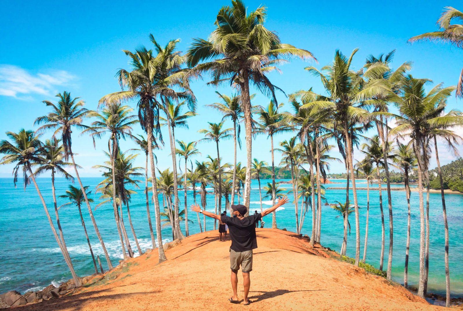 Coconut Farm in Mirissa