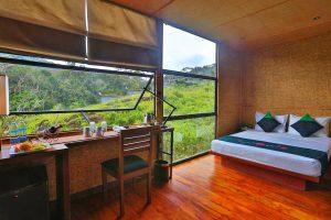 Rainforest-Eco-Lodge-02