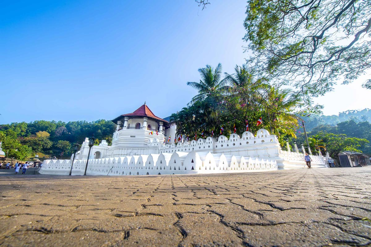 Kandy Day Tour in Sri Lanka