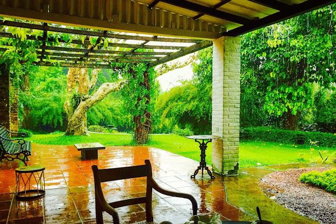Brief Garden in Beruwala