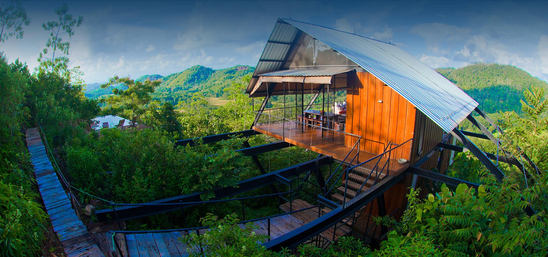 The Ark Tree House