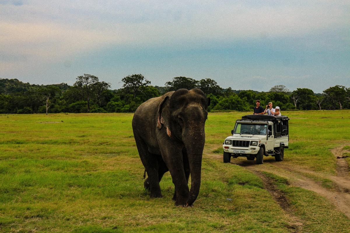 Best Places to Visit Sri Lanka